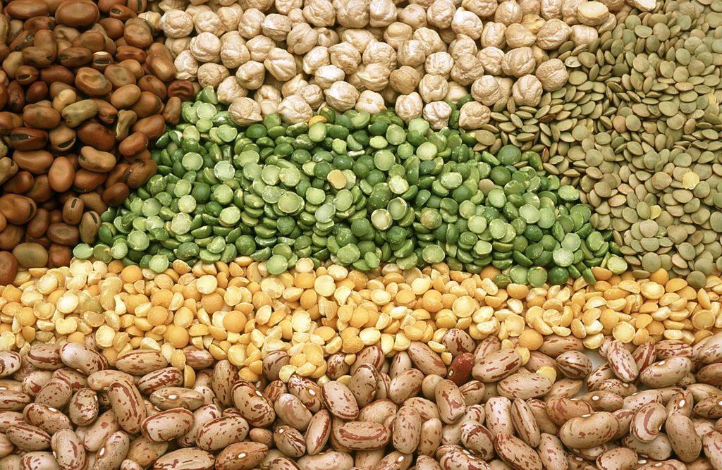ถั่ว - อาหารต้านอนุมูลอิสระอินเดีย