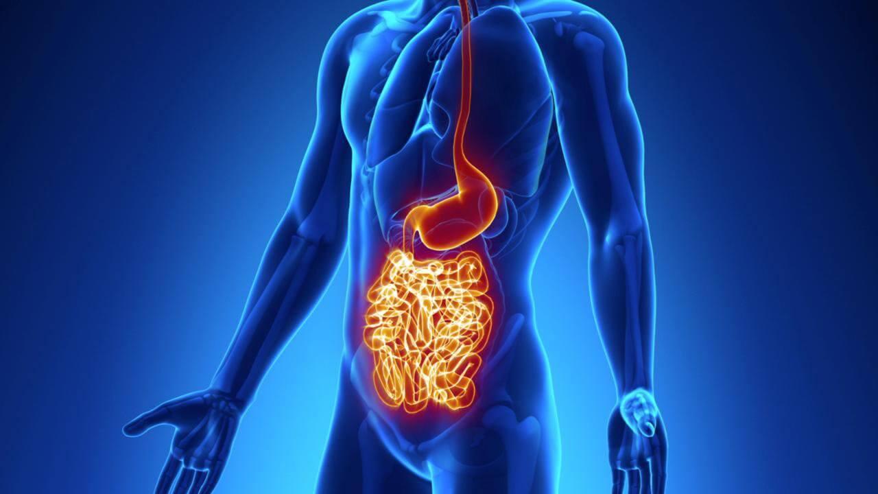 crohn's disease diet