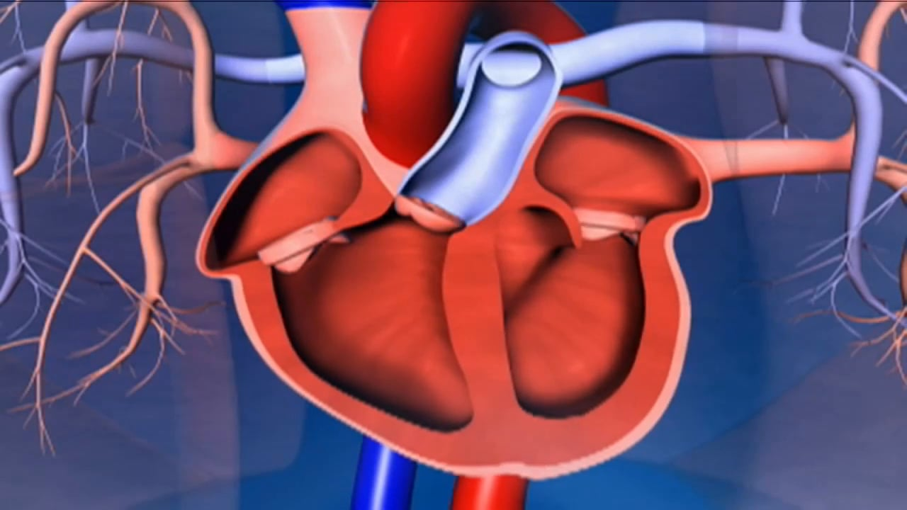 Symptoms of Heart attack in Hindi