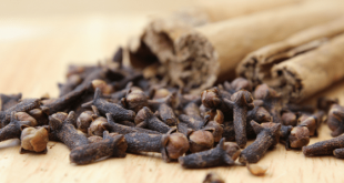 benefits of cloves - health benefits of cloves