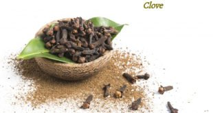 benefits of cloves, health benefits of cloves
