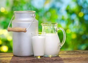 milk - vitamin d rich foods India