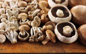 mushrooms - vitamin d rich foods india