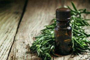 bed bugs spray - tea tree oil - how to get rid of bed bugs