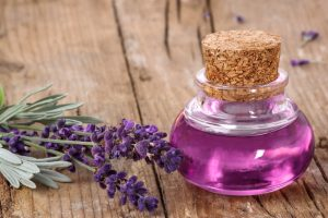 how to get rid of bed bugs - lavender oil