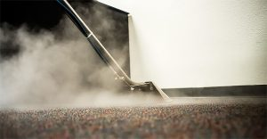how to get rid of bed bugs - steam