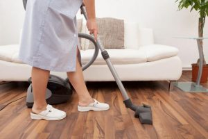 how to get rid of bed bugs - vaccum cleaner