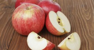 apple seeds cyanide - do apple seeds contain cyanide