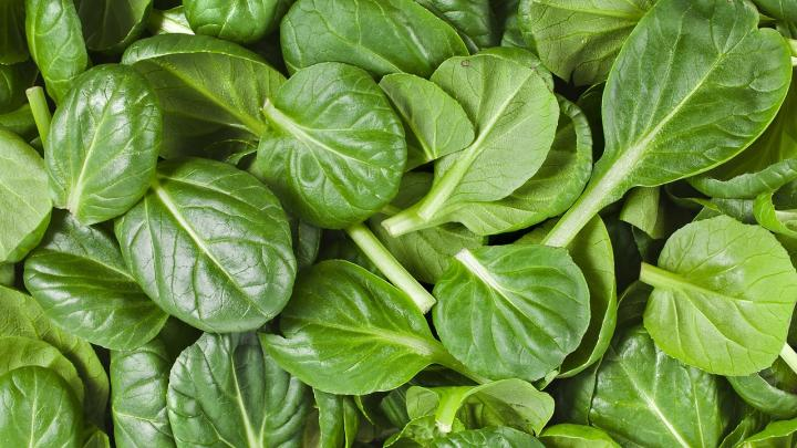 calcium rich indian foods - spinach