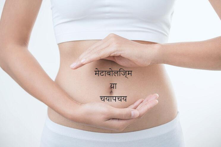 metabolism meaning in hindi - metabolism in hindi