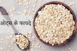 benefits of oats in hindi - meaning of oats in hindi
