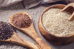 quinoa meaning in hindi - quinoa in hindi - quinoa benefits in hindi