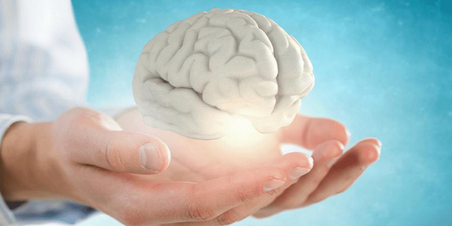 Benefits of Watermelon Seeds - 5. Healthy brain