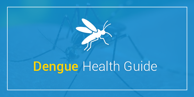 Dengue Health Guide