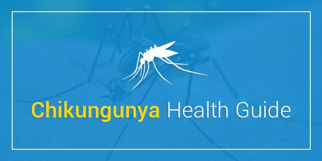 Chikungunya Health Guide