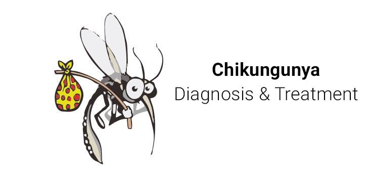chikungunya diagnosis
