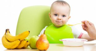tips to feed your picky eater