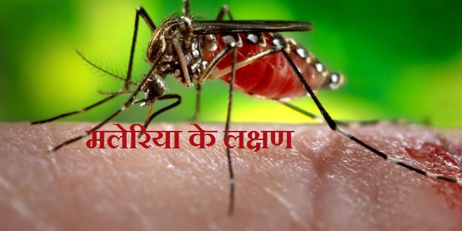 Malaria ke Laksahn, Malaria symptoms in hindi