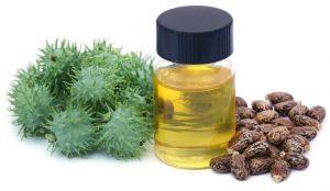 castor oil in hindi, Castor oil meaning in hindi