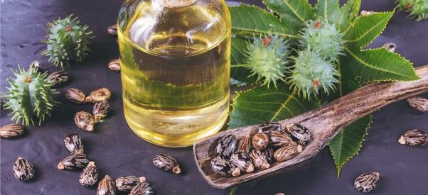 Castor oil meaning in hindi, Castor oil benefits in hindi, Castor oil in hindi