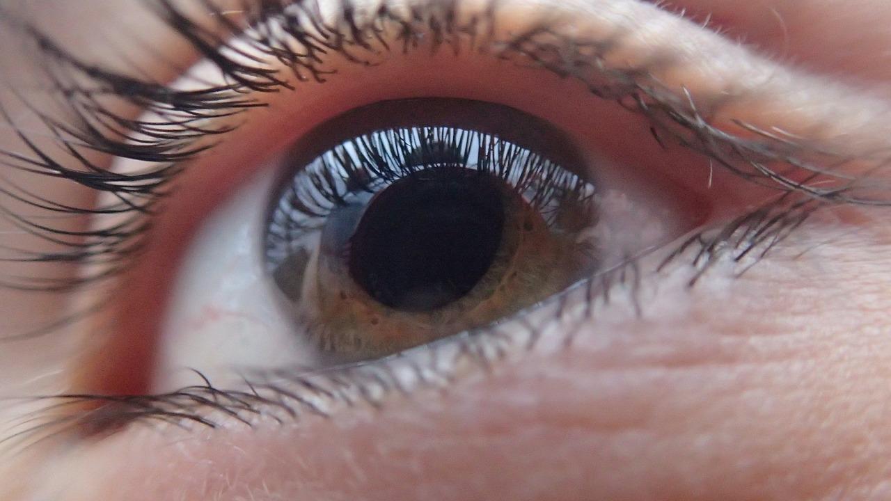 Cataract Meaning in Hindi, Cataract in HIndi