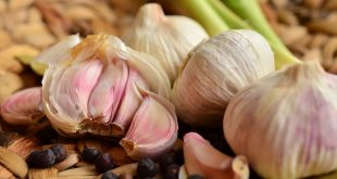 Garlic Benefits in hindi, Garlic Meaning in Hindi, Lahsun ke Fayde