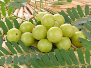 Amla Juice Benefits in Hindi, Amla Benefits in Hindi, Amla in Hindi, Amla Juice ke Fayde