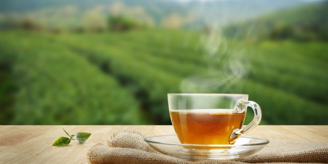 Green Tea ke Fayde, Green Tea Benefits in Hindi, Green Tea ke Fayde in Hindi