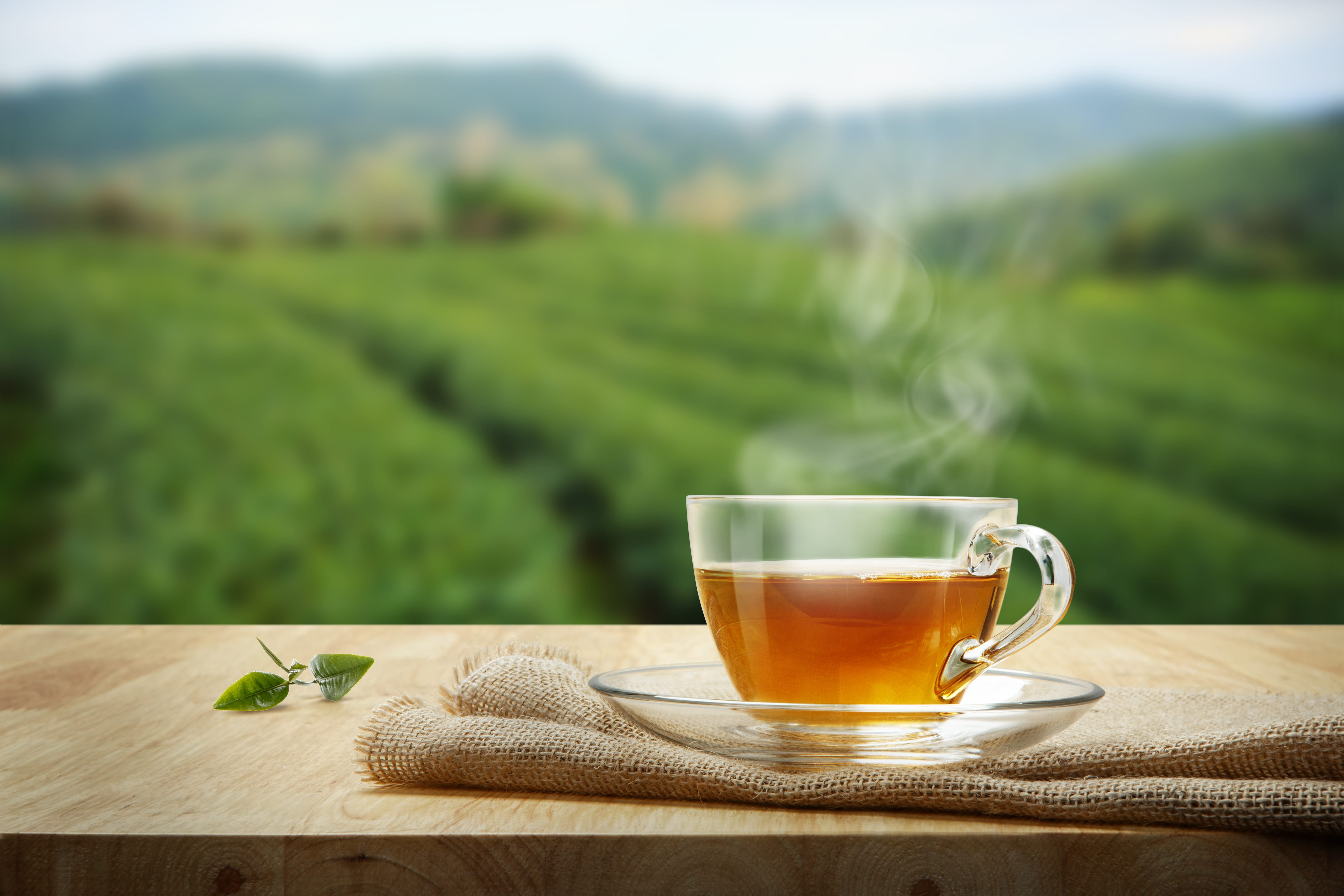 Green Tea ke Fayde, Green Tea Benefits in Hindi, Green Tea ke Fayde in Hindi