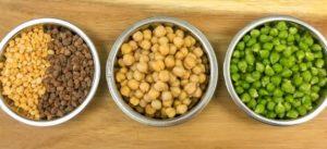 High Protein Diet, High Protein Vegetarian Diet, veg Protein diet