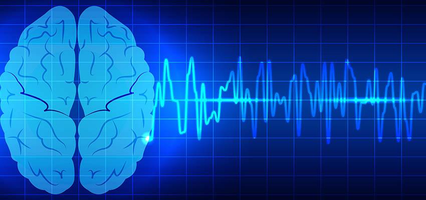 seizure Meaning in Hindi, seizure in Hindi, seizure disorder in Hindi