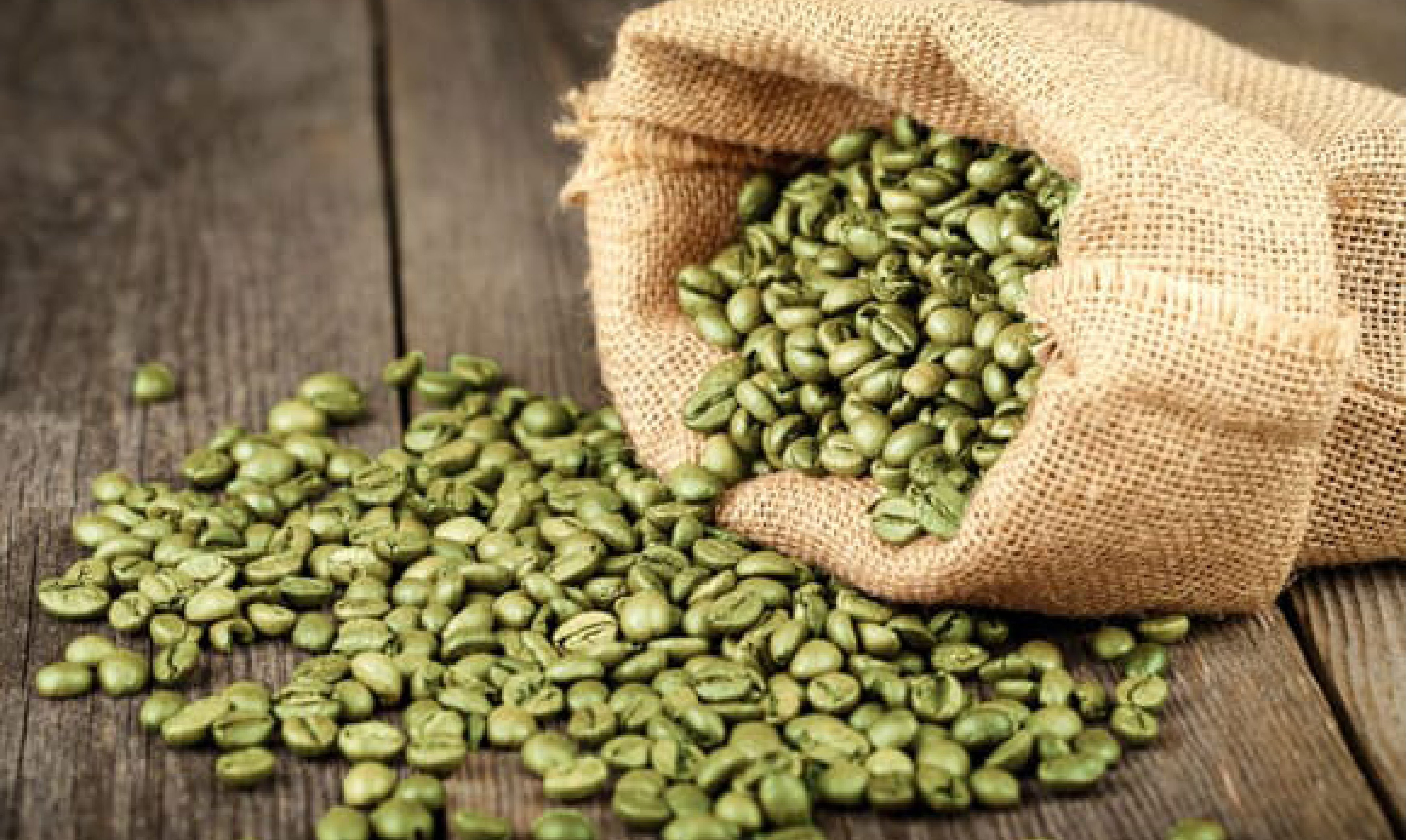 Green Coffee beans, green coffee benefits, Green coffee benefits for weight loss, Green coffee side effects