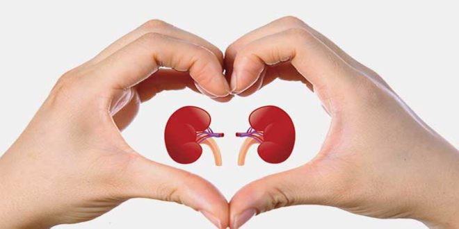 Kidney Failure Symptoms in Tamil, Kidney Failure in Tamil, Kidney Failure treatment in Tamil