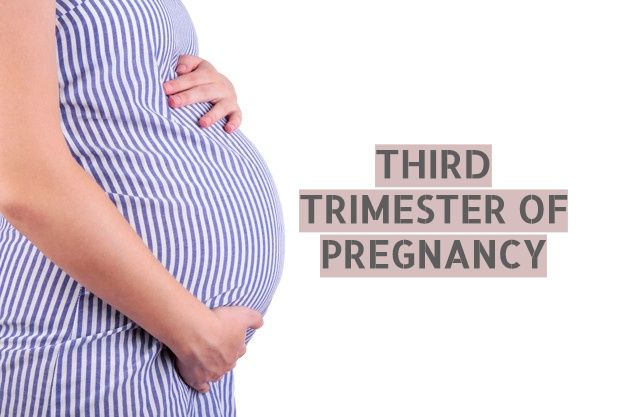 third trimester of pregnancy, third trimester pregnancy