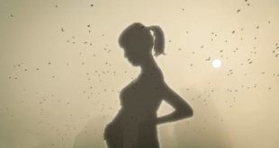 Air pollution effects on pregnancy