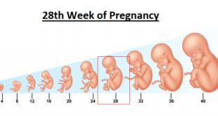 28th week of pregnancy, 28 weeks pregnant, 28 weeks pregnant symptoms,
