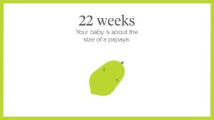 22nd week of pregnancy, body changes in the 22nd week of pregnancy