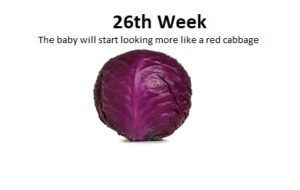 26th week of pregnancy, baby weight in 26th week of pregnancy, baby movements in 26th week of pregnancy