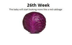 26ª semana de gravidez, peso do bebê na 26ª semana de gravidez, movimentos do bebê na 26ª semana de gravidez