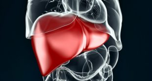 All about Liver