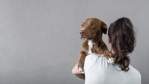 Os cães ajudam a aliviar a depressão
