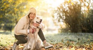 Dogs Help Ease Depression